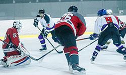 Hokejový zápas ise - Elimer